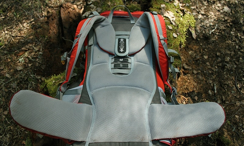 The back padding on the Mountaintop backpack